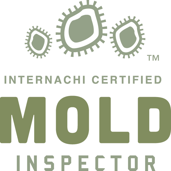 Kansas City mold inspection near me